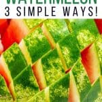 3 Ways to Cut a Watermelon